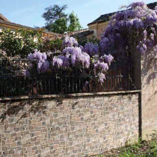 Muro di Assisi Grigio